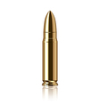 object bullet vector image