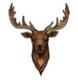 Wild Deer Head Portrait vector image