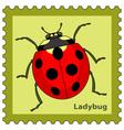 Ladybug stamp vector image vector image
