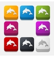 square button dolphin vector image