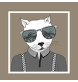 Fashion of dressed up cat vector image