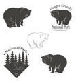 logo with the image of a bear vector image