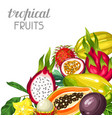 background with exotic tropical fruits vector image