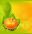 background with pumpkin in leaves vector image