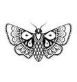 Hand drawn artistically black Butterfly vector image vector image