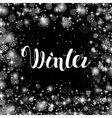 Winter Hand Lettering Inscription Hand Drawn vector image