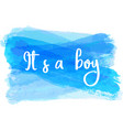 baby gender reveal vector image vector image