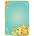 sunflower background vector image