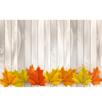 Happy Thanksgiving background with colorful leaves vector image