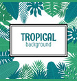 abstract background with tropical leaves in frame vector image