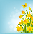 spring cart with narcissus vector image