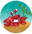 red fiddler crab vector image