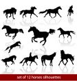 horses silhouettes vector image vector image