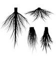 silhouette tree roots set vector image
