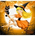 Witch and her cat familiar flying on broomstic vector image