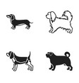 pikinise dachshund pug peggy dog breeds set vector image