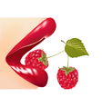 Red gloss lips with raspberry vector image