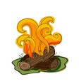 fire with firewood vector image