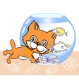 Kitten Aquarium and Fish vector image