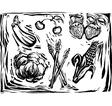 Mix of garden produce vector image