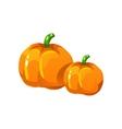 Pumpkin Bright Color Simple vector image