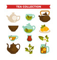 tea collection of cups teapot and teabags vector image