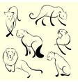 lion design set vector image vector image
