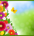 spring time postcard with butterfly vector image