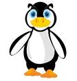 Wildlife penguin on white vector image