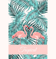 tropical card jungle leaves flamingo birds couple vector image