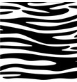 zebra skin animal texture black white wallpaper vector image