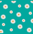 white daisy background vector image