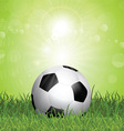 Soccer ball in grass vector image vector image