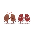 Human liver characters vector image