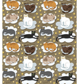 Cats seamless funny background vector image vector image