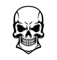 Danger human skull with eerie grin vector image