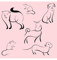 domestic animals design set vector image