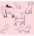 domestic animals design set vector image