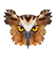 Owl portrait abstract low poly design vector image
