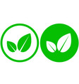 two simple leaf icons vector image