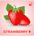 set of two fresh ripe strawberry with leaves vector image