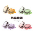 macaron macaroon macaron sketch set vector image