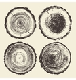 Set tree trunks Annual saw cut drawn vector image