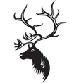 head of deer vector image vector image