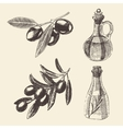 Olive Branch Bottle Set Hand Drawn vector image