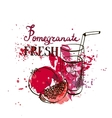 hand drawn pomegranate juice in glass vector image