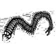 Centipede vector image vector image
