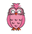 drawing pink owl loving vector image