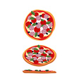 Pizza with tomatoes and sausage Food top view side vector image