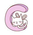 A cat is sleeping on alphabet vector image vector image